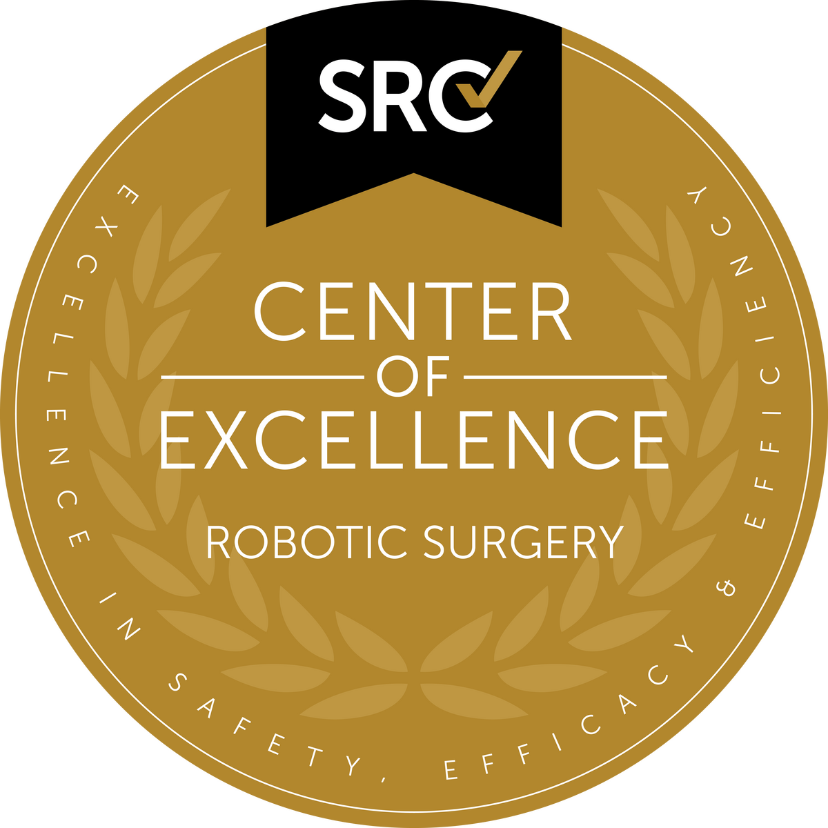 Robotic Surgery Center of Excellence